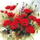 Servetel decorativ 'Wild poppies', 33cm